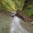 丹鳴川~▲丹鳴岳(1039m)