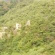 六甲山、 日の出の神の磐座への道。