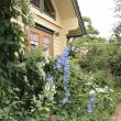 Re)バラ愛好家のバラの家(Apple Bear's Garden)