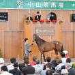JRA日本中央競馬会購買馬(75頭)とホームブレッド(6頭)の一覧について