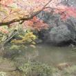 立田山自然公園でもみじ狩り
