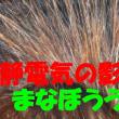 【静電気対策:日本人に生まれて良かった!知りたい事はGoogleさんが導いてくれます】静電気が身体に与える可能性のある意外な悪影響とは?