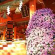 富士宮 日帰り旅