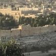 イスラエルよ。主を待て。