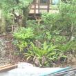 沖縄やんばる「森のおうち」ホテルのエクステリア工事