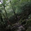 遠き日の記憶を辿りながら、英彦山を行く
