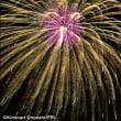 8月31日まで、お子様同伴のお客様に、【花火】プレゼント