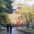 札幌まちなか探検隊    昨日の景色  中島公園その2