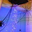 ワイヤーで蜘蛛の巣