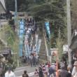 西海 コスモス祭り