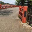宇治川散歩