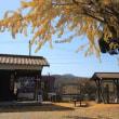 晩秋・黄葉の季節 北条鉄道(兵庫県)