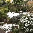 少しの雪でした