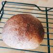 1・11・初焼きはキンカン入りの丸パン