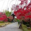 勧修寺の紅葉 ・・・ 京都