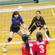 Akari.S  SP  (白澤明香里 選手) -ポートレートplus-