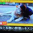 8/19 最後にナポ様とキス