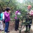 「平成29年度第1回里山保全実践講座」開催