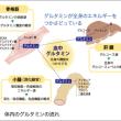 ゼンノア製品 サプリメント『SRQ』No.2