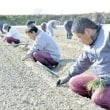 働く場探す障害者と担い手足りぬ農家、手を組み
