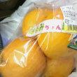 柑橘類と じゃこてん