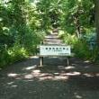 野幌森林公園・秋めく