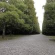 万博公園散策(2)