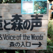創造と森の声