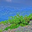 RKH 2018-14 金峰山4