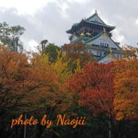 大阪城&紅葉