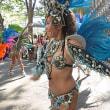 商工祭のサンバカーニバル