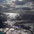 2018/01/13 八丈島釣行(シマアジ釣り2日目)