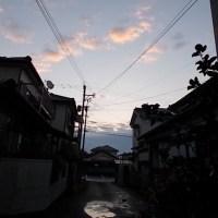 #雨上がり