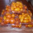 トマト採り