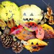 ~ 秋の自然も楽しもう!! ~