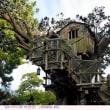 インジャン・ジョーの洞窟・ツリーハウス・ハーパーの粉ひき小屋 〈トムソーヤ島〉