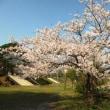 赤坂山公園。