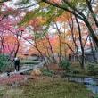 嵐山☆晩秋の旅2018
