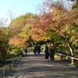 昭和記念公園の紅葉・・3