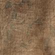 渡り木綿の更紗