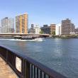 隅田川散歩。
