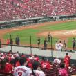 1 プロ野球観戦(広島カープ:東北楽天)  今年2回目の観戦に