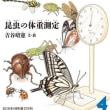 昆虫の体重測定‥月刊たくさんのふしぎ