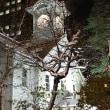 札幌でのお夕食〜〜。