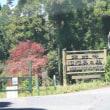 さくさく散歩―定光寺公園