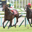 ダービー馬・レイデオロ、神戸新聞杯を快勝!ルージュバックは1年ぶりの重賞4勝目。