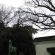 櫻木神社を雨中に訪ねる(香川の神社14-3)