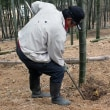 2018年 岡山・片岡たけのこ園の魅力の収穫状況