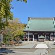遊行寺のイチョウ