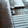 雪が…(^_^;)